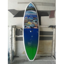 EPS Stand up Sup Surf Board of Various Model